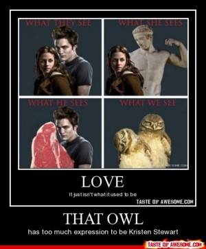 funny twilight picture