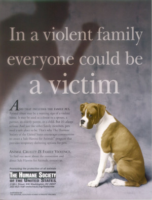Against Animal Cruelty! Animal abuse