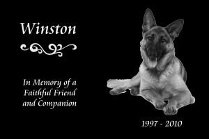 Pet Memorial Black Mirror