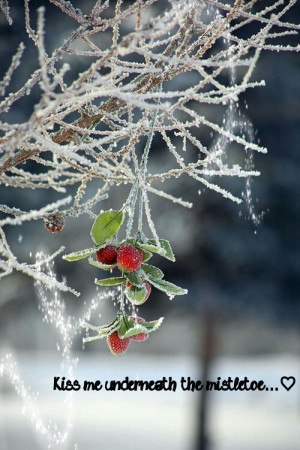 cute, kiss me, love, mistletoe snow, pretty, quote, quotes