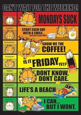 AlexZone: Garfield – Funny Quotes