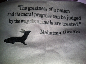 Gandhirific quote for the animal lover / crazy cat lady in me!