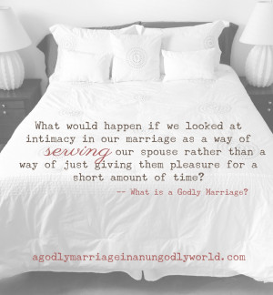 What is a Godly Marriage?   Intimacy in Your Marriage