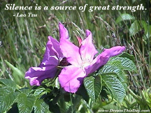 Loa Tzu: Silence is a source of great strength