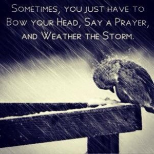 Weather the storm..