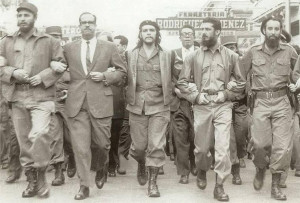 """... that falls when it is ripe. You have to make it fall."""" ~ Che Guevara"""