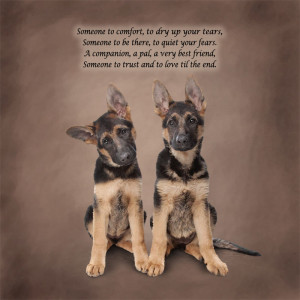 German Shepherd Poetic Portraits