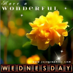 Have a wonderful Wednesday. ...Wonder Wednesday, Wednesday Quotes
