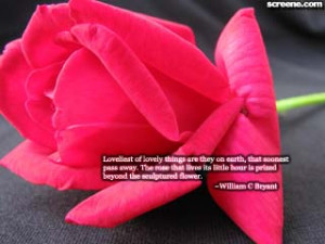 Beautiful Flower Quote