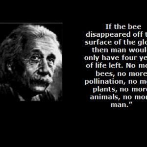 Life without bees is no life at all