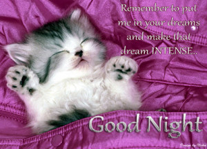 ... good night wallpaper ! Good night quotes ! Cute cat sleeping wallpaper