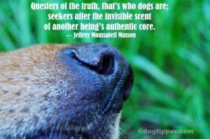 Famous dog quote: Jeffrey Moussaleff Masson