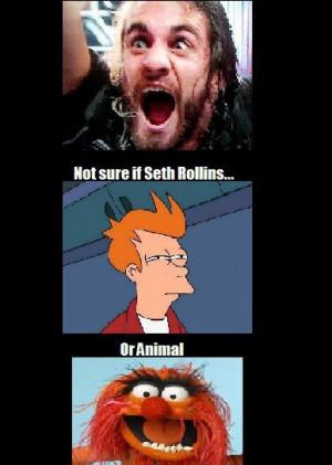 seth rollins | WrestlingLOL - Not sure if Seth Rollins or