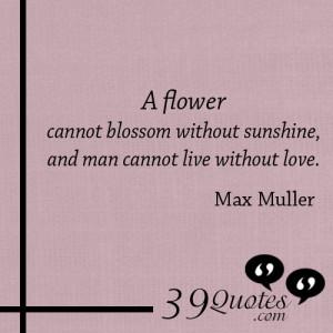 Max Heindel Quotes