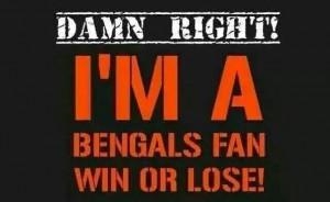 NFL Cincinnati Bengals meme wallpaper