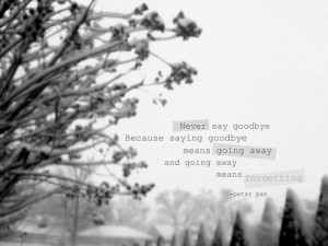 Goodbye, quotes and sad pictures