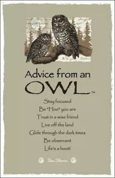 ... Owls to me! This would also fit in my Deep, Thoughtful and Funny