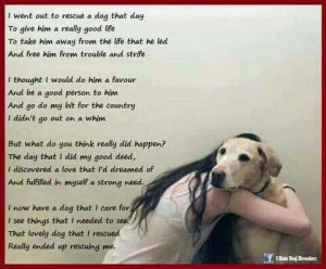 Rescue Dog Poem