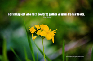 Inspirational Quotes About Flowers