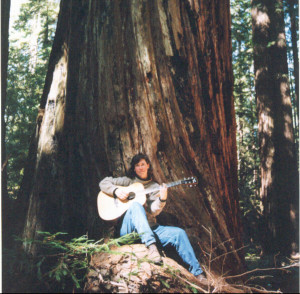 photo of red wood tree