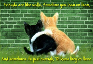 Friendship Quotes for True Best Friend Get free Pictures!
