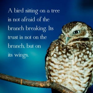 made this! #owl #quote