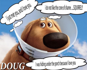 Dog Quotes (11)