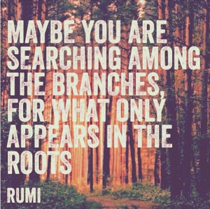 Maybe you are searching among the branches, for what only appears in ...