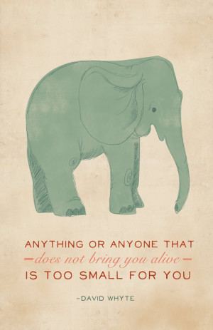 ... quotes david whyte quotes elephant infatuation whyte posters elephant