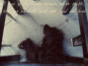 dogs,quotes,all,dogs,go,to,heaven,,1989,,dog,freedom,goodby ...
