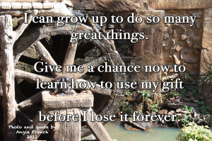 Quotes for the Gifted Learner