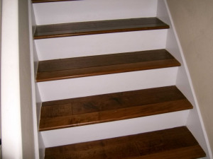 Hardwood Stairs with White Risers