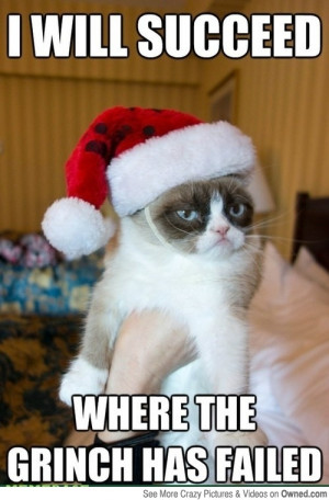 grumpy_cat_vs_the_grinch_540.jpg