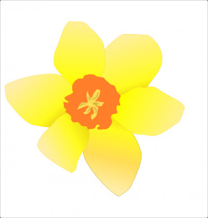 Daffodil Clip Art Vector Online Royalty Free Public Pictures
