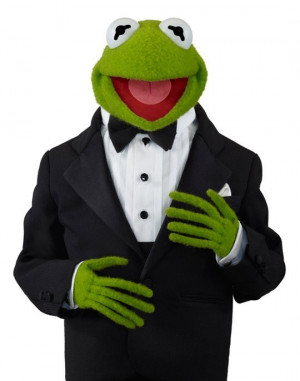 ... Stern, when you start to look like Kermit the Frog, you should retire