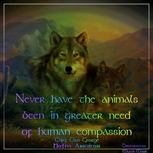 native american quotes about wolves | Visit facebook.com