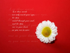 Valentines Day Lovely Quotes On Wallpapers
