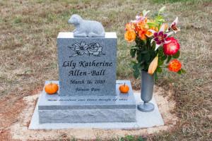 Lily's Memorial Stone in Crozet, Virginia