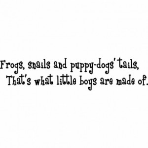 Frogs, Snails & Puppy Dog Tails...Baby Boy Wall Quote