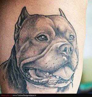 pitbull tattoo gallery horoskooppi luonneanalyysi