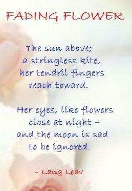 FADING FLOWER ....Lang Leav