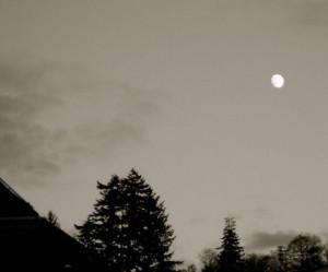 dark and stormy night catherine al meten dark and stormy night ...