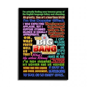 Sheldon Cooper Quotes Rectangle Magnet