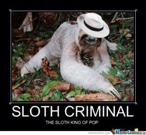 Sloth Criminal Meme...