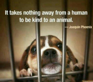 Be kind to ALL animals.