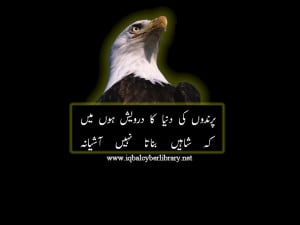 Allama Iqbal Quotes In Urdu