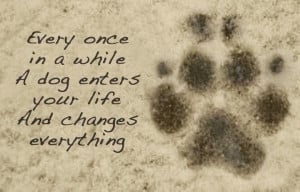 Famous Dog Quotes for All who Love Dog