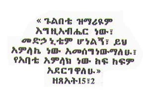 Amharic And Tigrignia Bible...