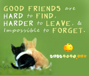 best friend quotes and friendship quotes a best friend is someone who ...