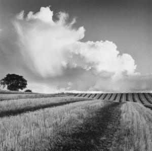 Large white cloud near Bilsington, Kent